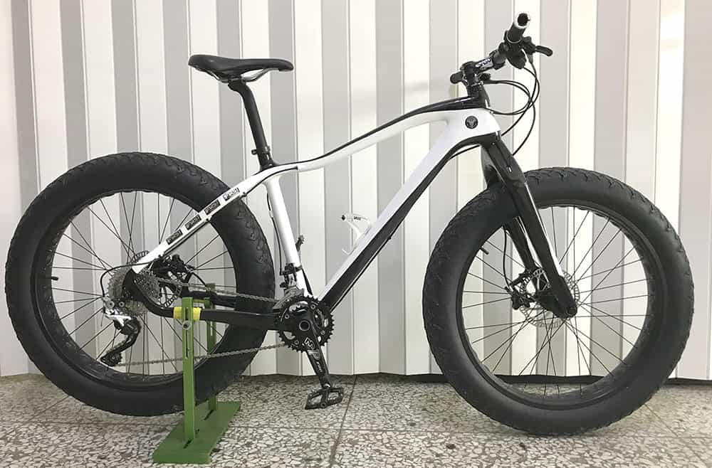 Carbon Fat Bike